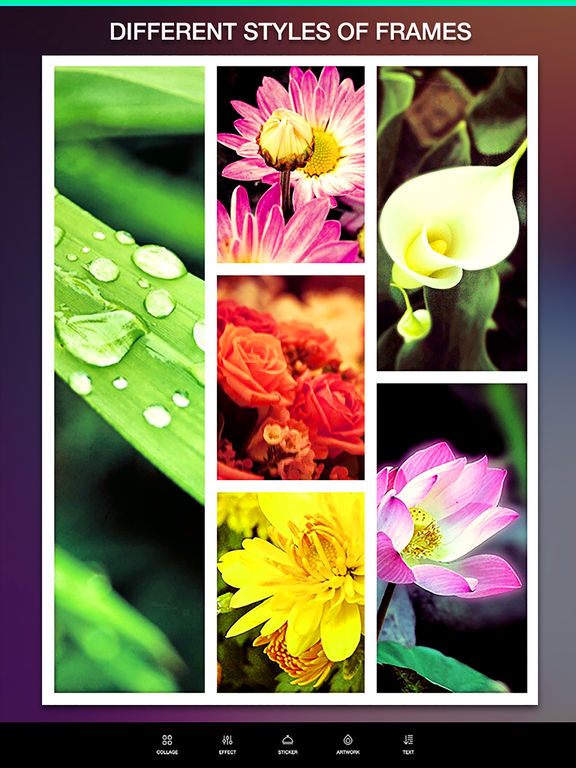 Layout Camera Collage Pro – Pic Frame Editor and Perfect Camera Effects Screenshot