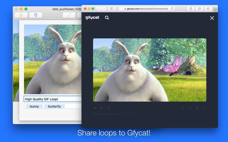 GIF Brewery 3 by Gfycat Screenshot