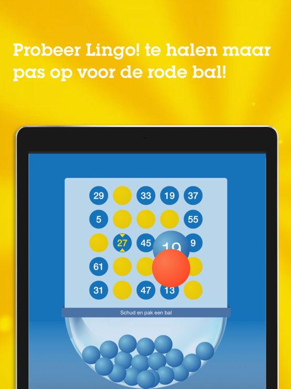 lingo game app