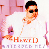 Waterbed Hev artwork