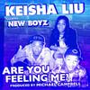 Are You Feeling Me? (Full Length) [feat. The New Boyz] - Single, Keisha Liu