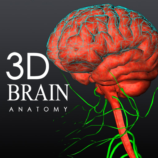 Brain 3d Anatomy Lite. Gallery Of Best Brain Anatomy App Anatomy ...