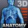 Human Body 3D Anatomy