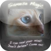 Siamese Magic icon