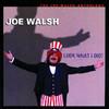 Look What I Did! - The Joe Walsh Anthology, Joe Walsh