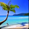 Beach Break - HD