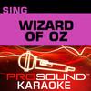 Sing the Wizard of Oz (Karaoke Performance Tracks), ProSound Karaoke Band