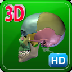 3D Human Skeleton Skull_HD