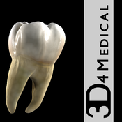 Dental Patient Education icon
