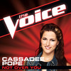 Not Over You (The Voice Performance) - Single, Cassadee Pope