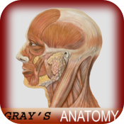 Atlas of Human Anatomy for iPad icon