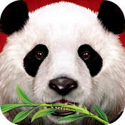Wild Panda casino slot game icon