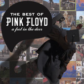 The Best of Pink Floyd: A Foot In the Door (Remastered), Pink Floyd