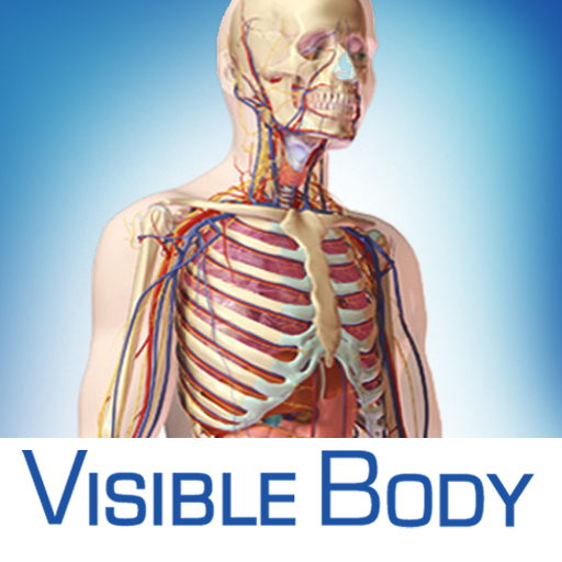 DOWNLOAD VISIBLE BODY 3D FREE