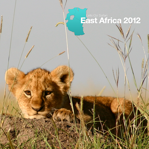 Let's Go Safari East Africa Magazine