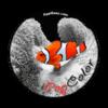 App iPopSplash 2.2
