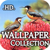 Amazing Wallpapers Package HD icon