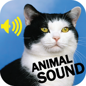 Animals Sounds Board HD icon