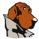 McGruff SafeGuard Browser Icon
