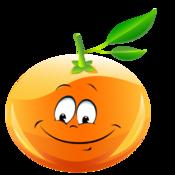 Stopwatch Orange