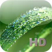 Medicinal Plants HD icon