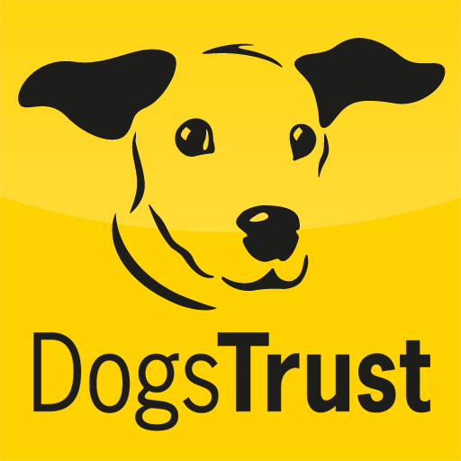 You and Your Puppy HD from Dogs Trust