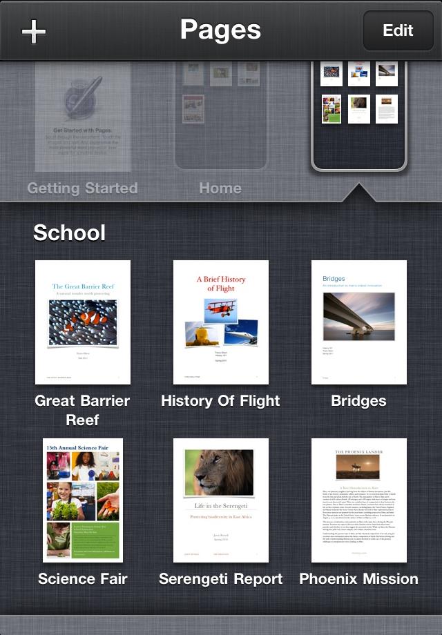 Обратите внимание на pages от apple inc - очень функциональный и в то же время простой в освоении