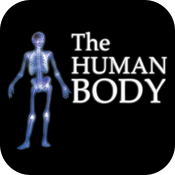 The Human Body icon