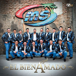 View album El Bien Amado - Single