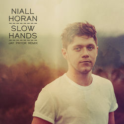 View album Niall Horan - Slow Hands (Jay Pryor Remix) - Single