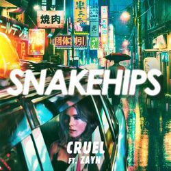 View album Snakehips - Cruel (feat. ZAYN) - Single