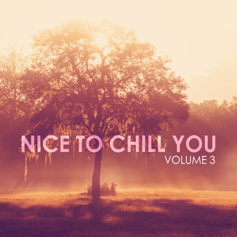 Nice to Chill You, Vol. 3 – Various Artists