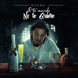 View album Si No Te Quiere - Single
