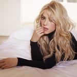 View artist Shakira