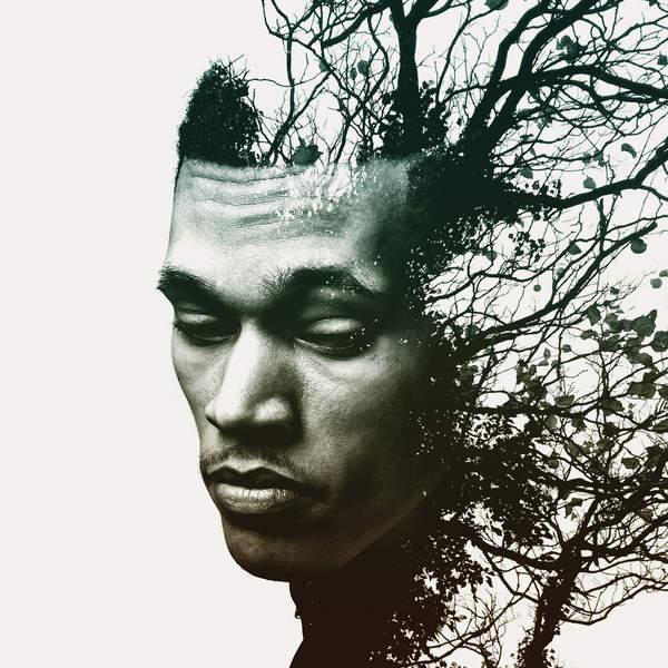 Trip Lee   Rise (2014) [iTunes Plus AAC M4A]