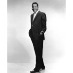 View artist Brook Benton