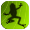 青蛙捕食 Ancient Frog for Mac