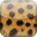 Cheetah mobile app icon
