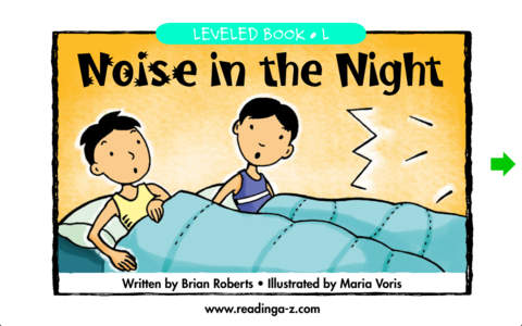 Noise in the Night – LAZ Reader [Level L–second grade]