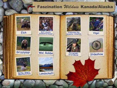Wildtiere Kanada Alaska