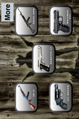 5 gun shots