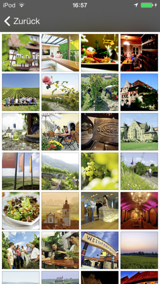 Franken – A Land of Wine and Beauty! Franconian Wine Vacations iPhone Screenshot 4