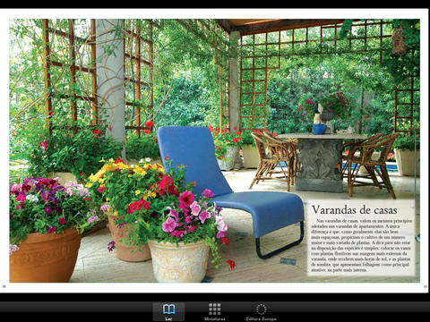 Vasos: Flores e Folhagens