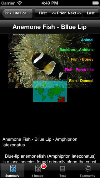 Fishes of the World - eFishesW iPhone Screenshot 4