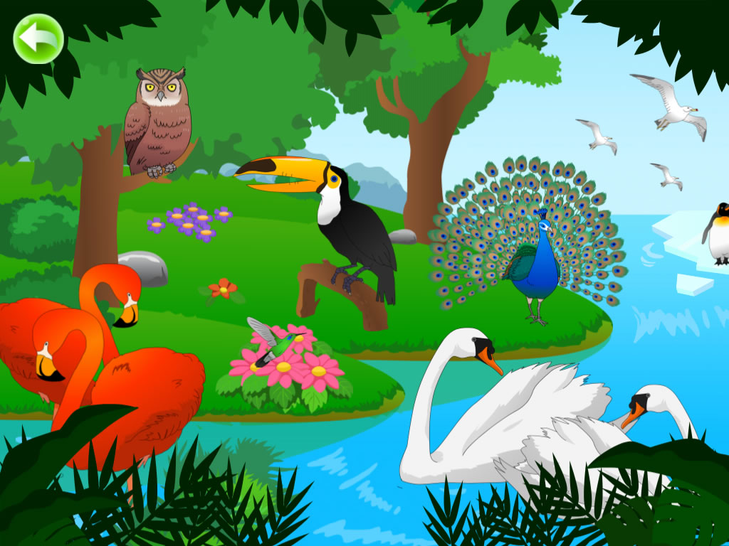 Birds for Kids HD - FREE Game - 猫猫探秘飞鸟乐园HD -普通话+粤语+英语发音(免费版) - 貓貓探秘飛鳥樂園HD -普通話+粵語+英語發音(免費版)