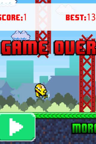 Fun Run Bird Race screenshot 3