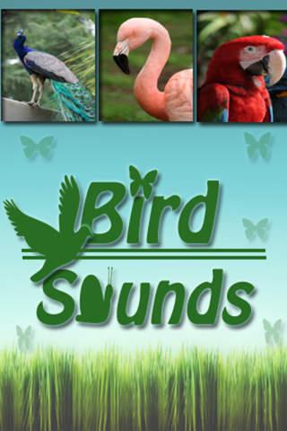 Bird Sounds +