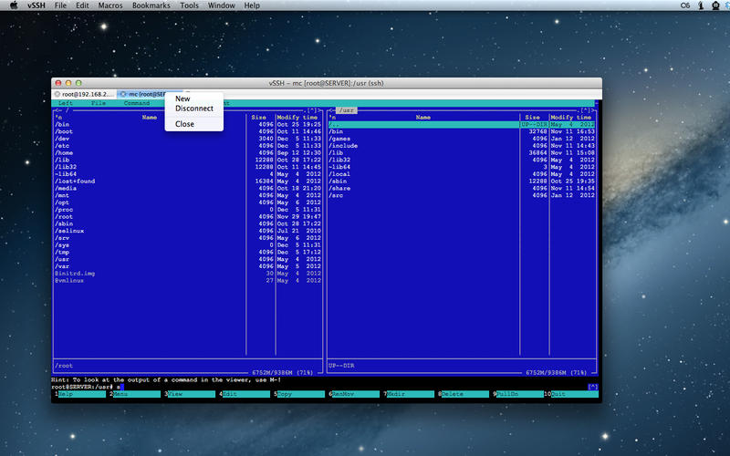 vSSH Screenshot - 2