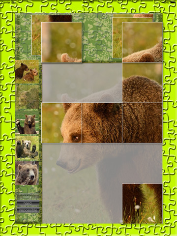 Bears Puzzle