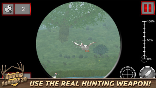 Hunting Animals 3D